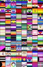pride flag handbook part 3 by reignbow_memes