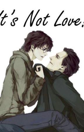 It's Not Love! by phoenixmaiden13
