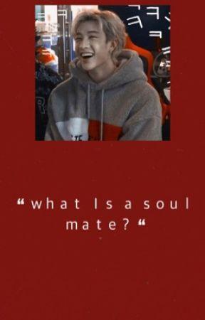 """ 𝐰𝐡𝐚𝐭 𝐢𝐬 𝐚 𝐬𝐨𝐮𝐥𝐦𝐚𝐭𝐞? "" | Multi ap Fic by DahyunTheeStallion"
