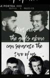 NOT EVEN THE GODS ABOVE, CAN SEPARATE THE TWO OF US (ZARRY) cover