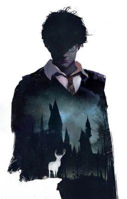 DROP [ HP ] [AllHar] Đâu mới là nơi tôi thuộc về