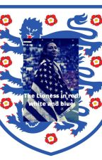The Lioness in Red White and Blue by SadieMarie2019
