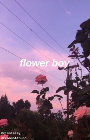 flower boy || dreamnotfound / gream by vinnieley