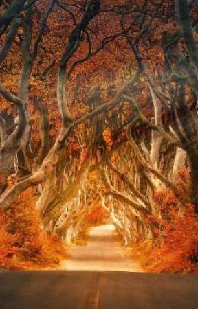Tales of Meldevan by Jemnotic