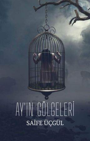 AY'IN GÖLGELERİ by saifeucgul