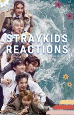 Straykids Reactions! by WeCanStay_0325
