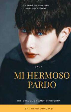 →Mi hermoso Pardo-2Won by Pivana_Mincrazy