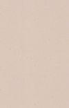 SUPER FREAK (ꜱᴛʀᴀɴɢᴇʀ ᴛʜɪɴɢꜱ) cover