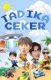TADIKA CEKER   The Boyz cover