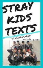 Stray Kids Groupchat by Embarrassments