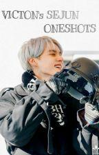 // sejun's oneshot // by yangdeonim