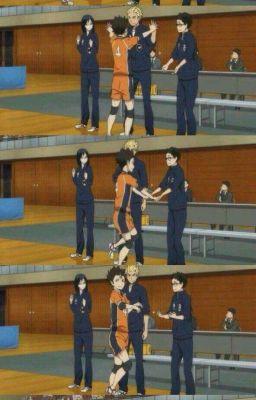 реакции по волейболу:0|haikuyuu!! |