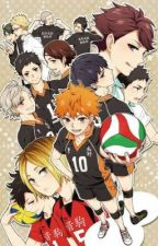 Volleyhoes || Haikyuu Chatfic/Fanfic by milkteasupremacist