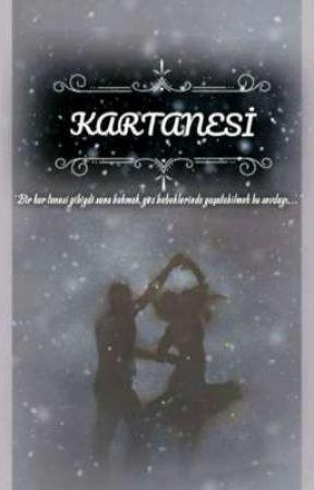 KAR TANESİ by _nemesis22