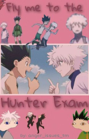 Fly me to the Hunter Exam (Hunter x Hunter Fanfiction) by anger_issues_tm