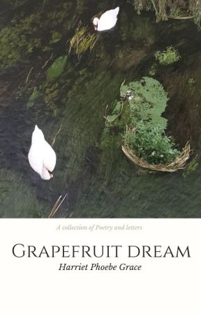 Toothpaste & Shoelaces // A Collection Of Poems by hxttie123