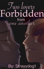 Two Lovers Forbidden from One Another ZukoxSokka by StrayyDog1