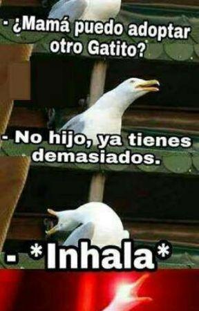 Memes Random [Videojuegos Y Random] by Mary_Enriquez425