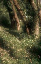 playlist by halalerzet