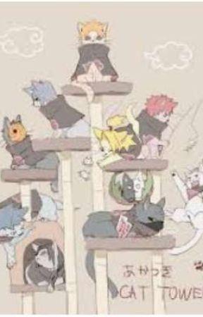 akatsuki cats (Discontinued) by Jazzy_fucking_BiTcH