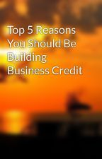 Top 5 Reasons You Should Be Building Business Credit by murzdevix