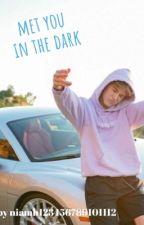met you in the dark ~ a nick austin story by imsuperboredlol123