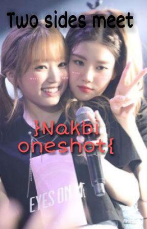 Two Sides Meet (Nakbi oneshot) by Minju_ga_ddo
