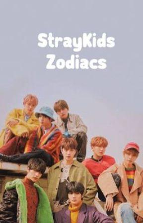 \|StrayKids Zodiacs|/ by idunnoharname
