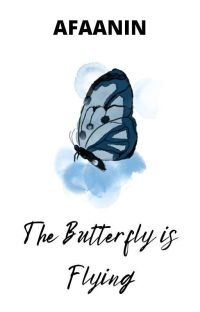 The Butterfly is Flying cover
