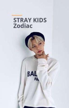 STRAY KIDS- Zodiac by snoo_ya