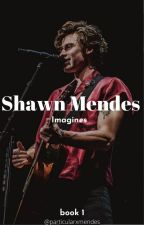 Shawn Mendes Imagines by particularxmendes