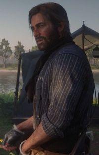 (Life of an outlaw) /Arthur Morgan x reader/  cover