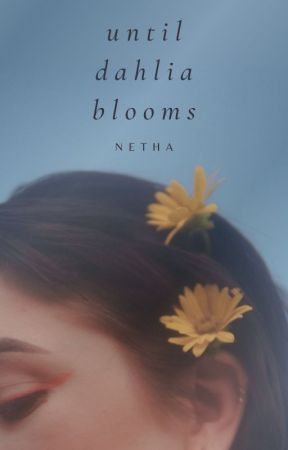 Until Dahlia Blooms by -netha