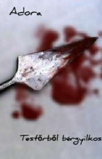 Testőrből bérgyilkos (Bérgyilkosból testőr II) cover