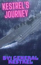 Kestrel's Journey by WillisAw