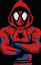 A Certain Misfortunate Spider by Komigakuo