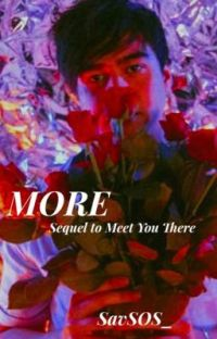 More | Sequel to Meet You There cover