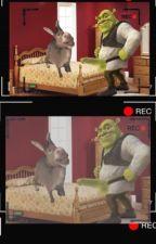 Shrex Tape: Shrek x DonKEH by ShrekisMotherNature