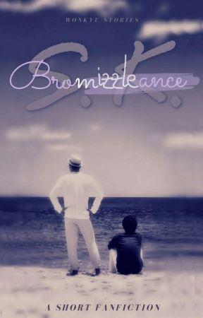 S.K. BROMANCE • [WONKYU]✔️ by gyuyomi88