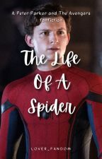 The Life Of A Spider by tookachonce_28