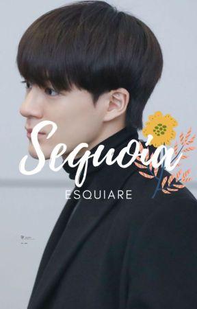 Sequoia 2nd version | Lee Jeno | ✅ by dldkda