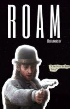 roam - sean macguire  by outlawmarston