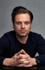 Sebastian Stan Imagines and One-shots BOOK 2 by dani_sd