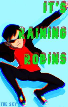 It's Raining Robins by Sky_Warrior01