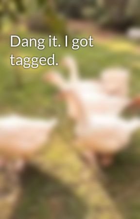 Dang it. I got tagged.  by AitakArk