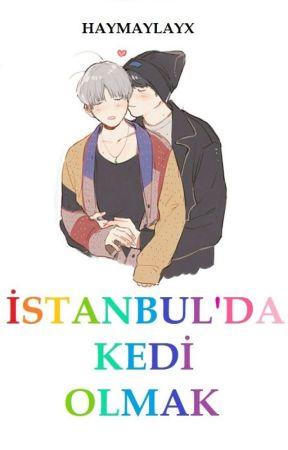 İstanbul'da Kedi Olmak(Gay) by haymaylavx