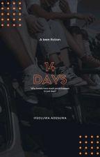 14 Days by vilalove09