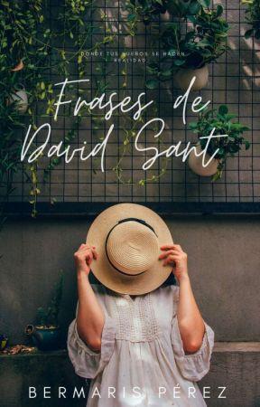 Frases de David Sant  by Bermaris23054