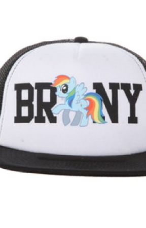 The Brony Hat by BrOnYgAmEr01