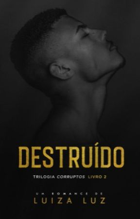 DESTRUÍDO [COMPLETO NA AMAZON] by autoraluizaluz